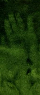 Pelúcia Verde