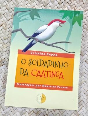 LIVRO: O SOLDADINHO DA CAATINGA